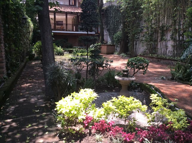 Your oasis in the heart of Coyoacan