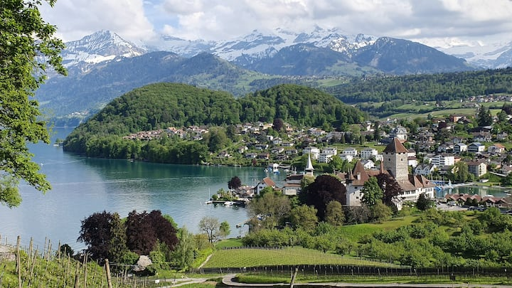 Traumort am See, Skifahren, Langlauf, Schneetrail