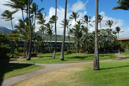 Molokai (not Maui) Resort Network-Ready  New Condo
