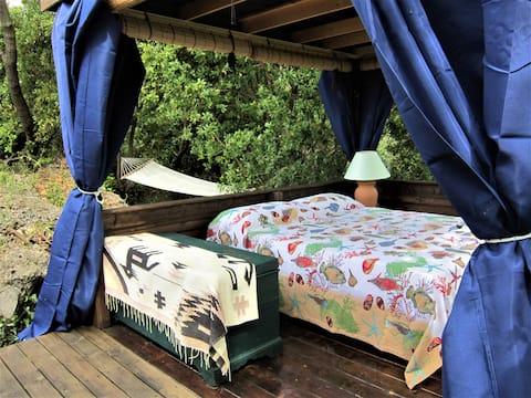 OAK FOREST A WILD EXPERIENCE IN RIVIERA LIGURE