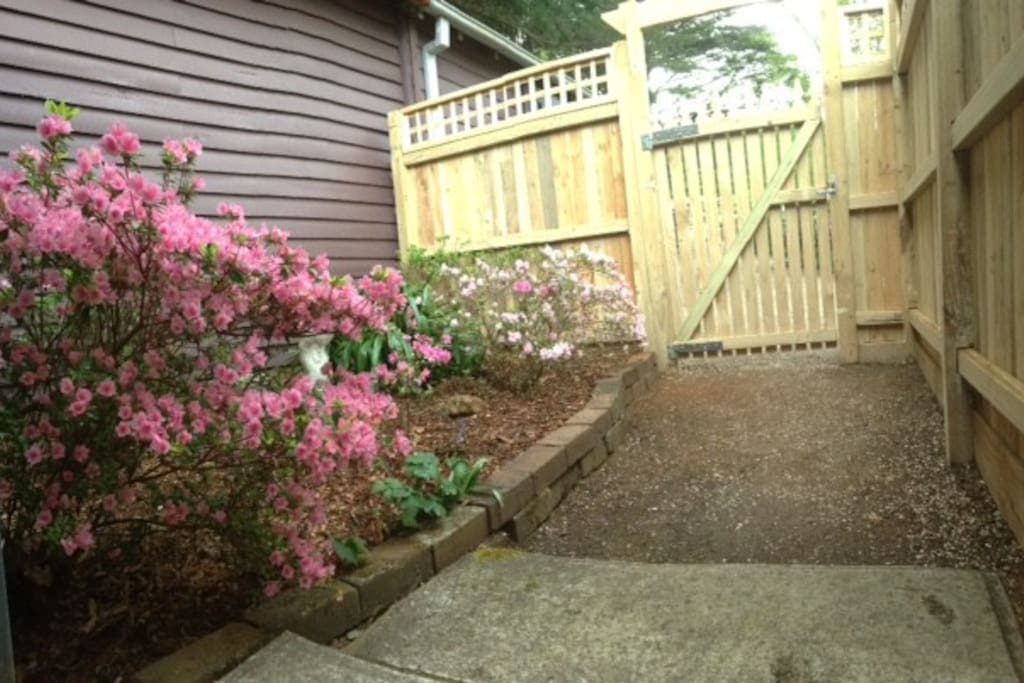 Private courtyard with your own entrance. Carpark area close to entry.