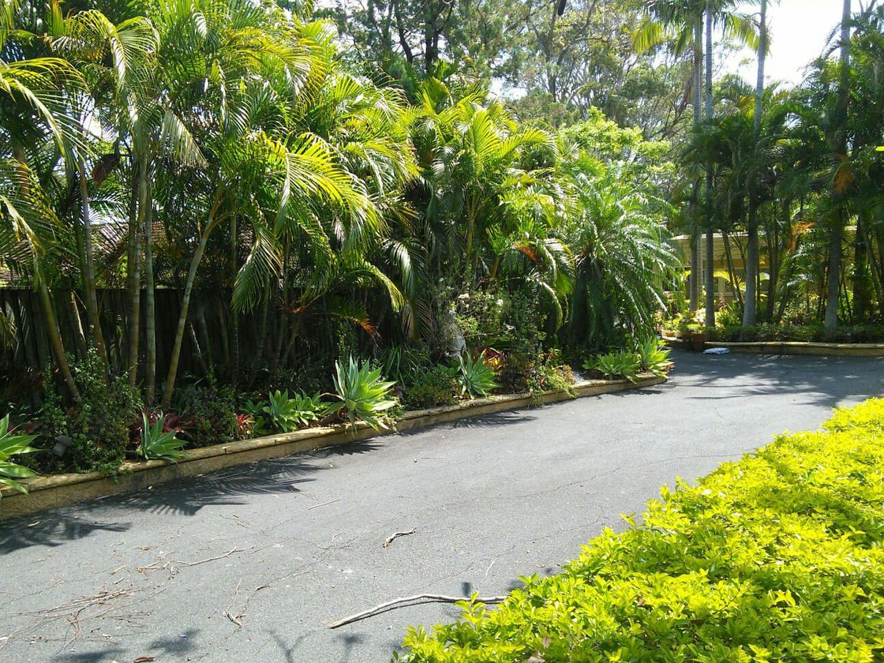 Driveway into gated property