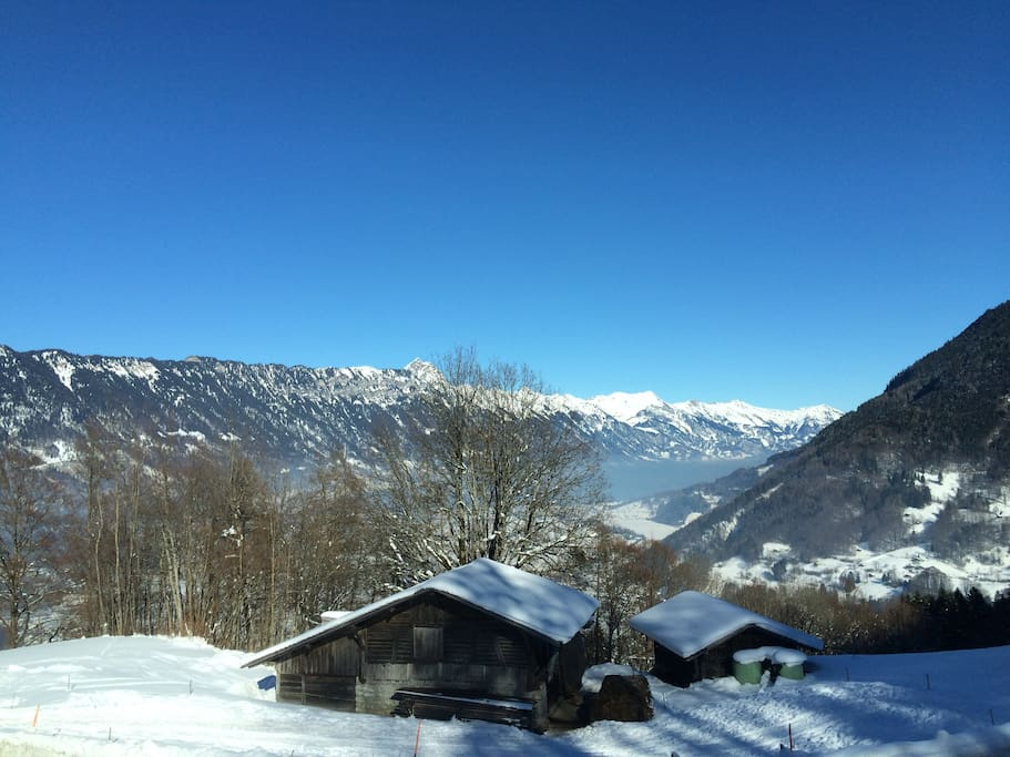 View from the Chalet.