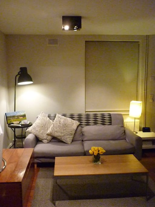Beautiful Loft Style 1 Bedroom Flat Apartments For Rent