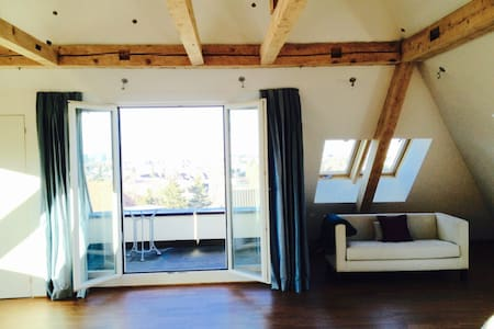 loft apartment - Binningen