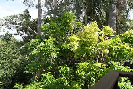 Spacious green sanctuary near city - Moorooka - 独立屋
