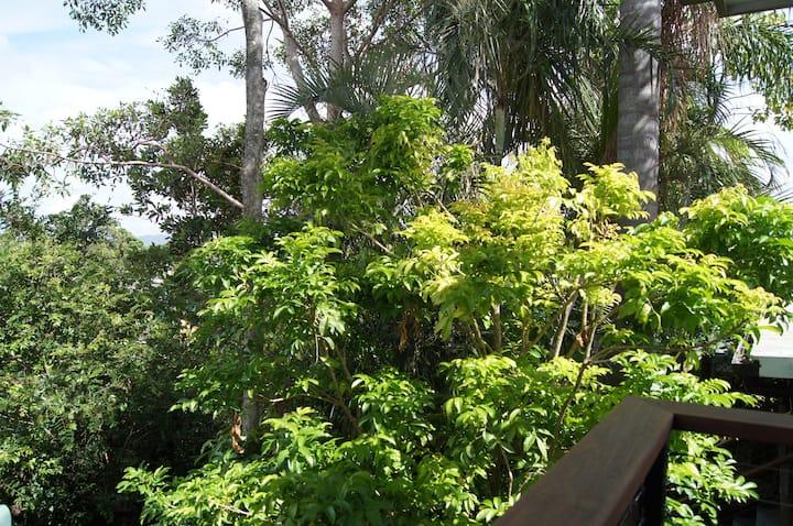 Spacious green sanctuary near city