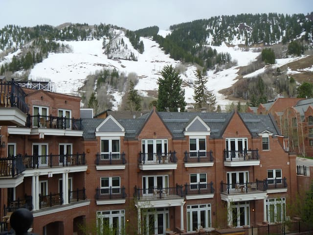 Aerial View of the property looking toward Ajax Mountain in Winter.