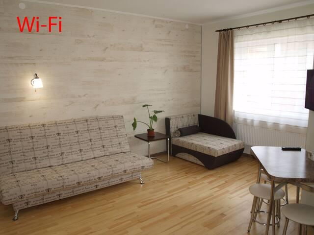 Квартира-студио во Львове! Wi-Fi - Lvov - Byt