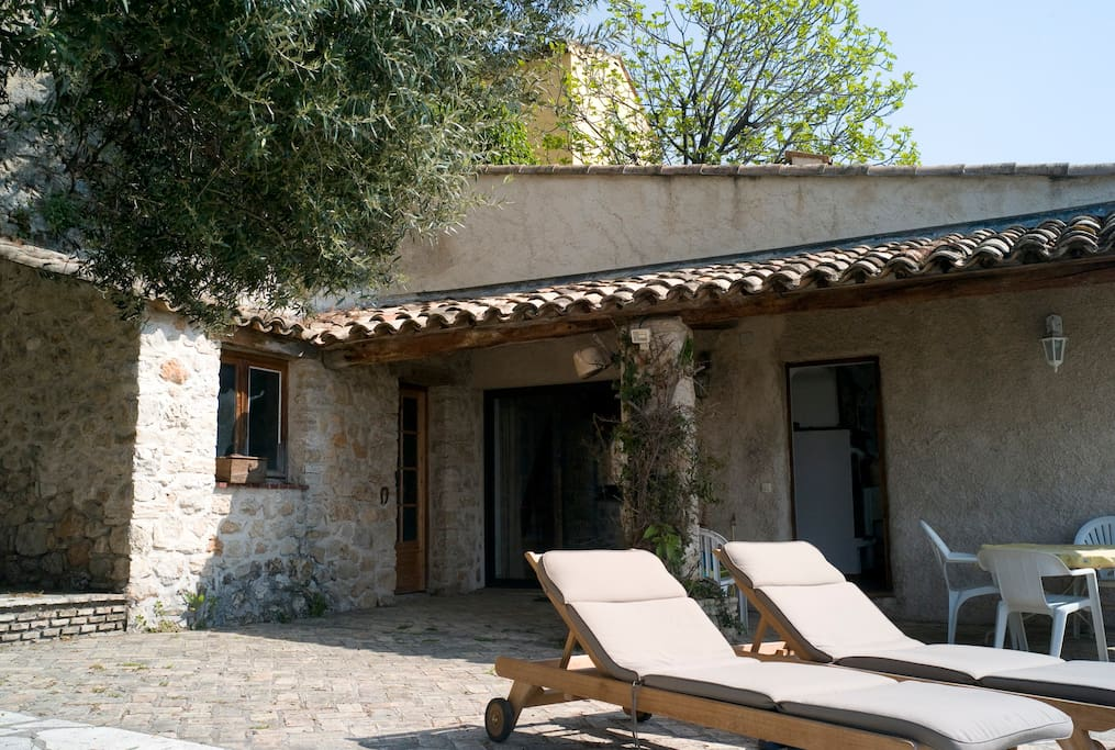 South facing terrace with lovely olive tree