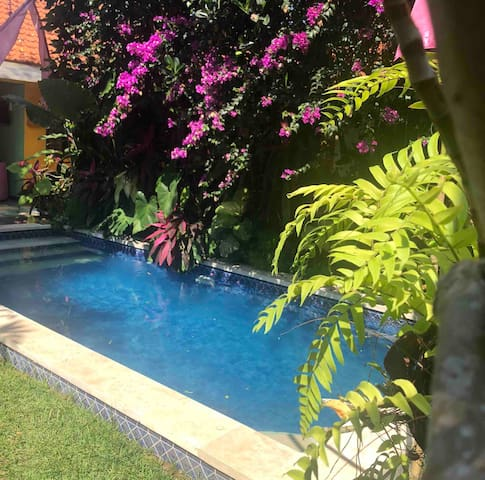 pool is shared by 3 villas in the compound to conserve our village water