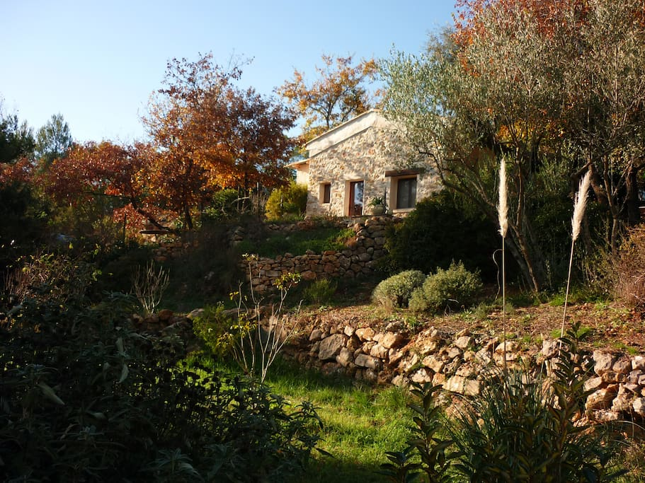 G te avec piscine en pleine nature maisons louer for Gite provence piscine