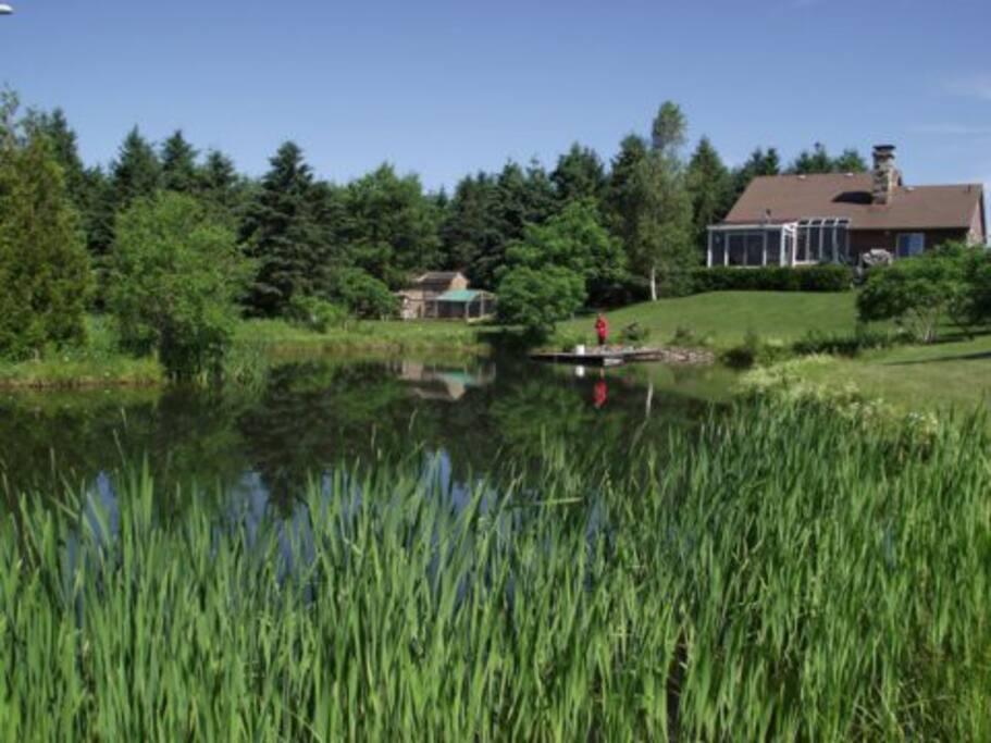 Notre étang de pêche à la truite