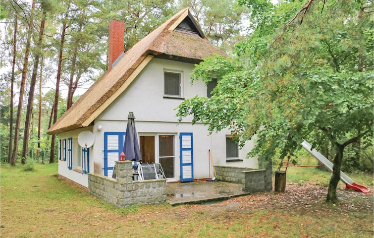 Holiday cottage with 3 bedrooms on 76m² in Prerow