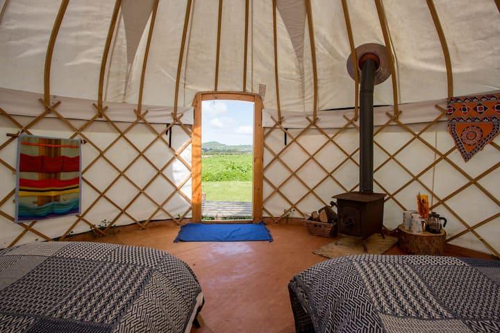 The Twin Yurt :Elvis
