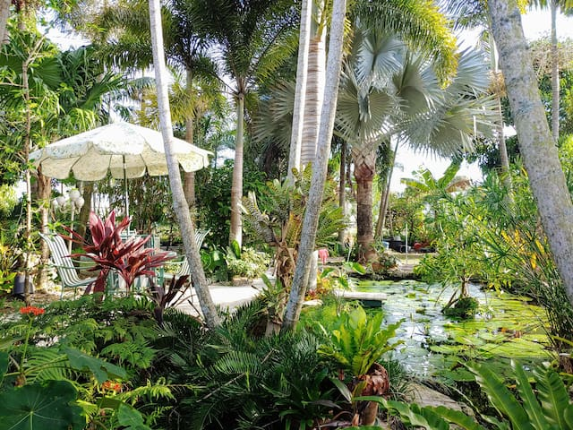 Tropical Paradise: Sanitized w Ozone as hospitals