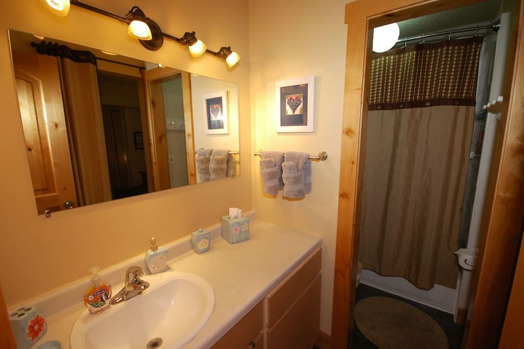 Beautifully appointed bathroom with tub/ shower and large mirror.