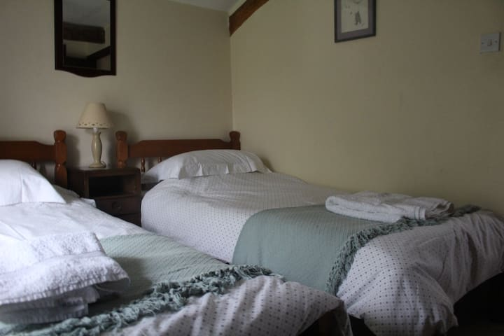 Two beds with crisp cotton sheets and soft white towels.