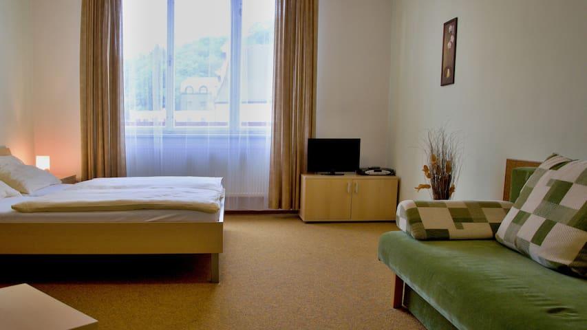 Apartmán 2+1 - Penzion Rozálie