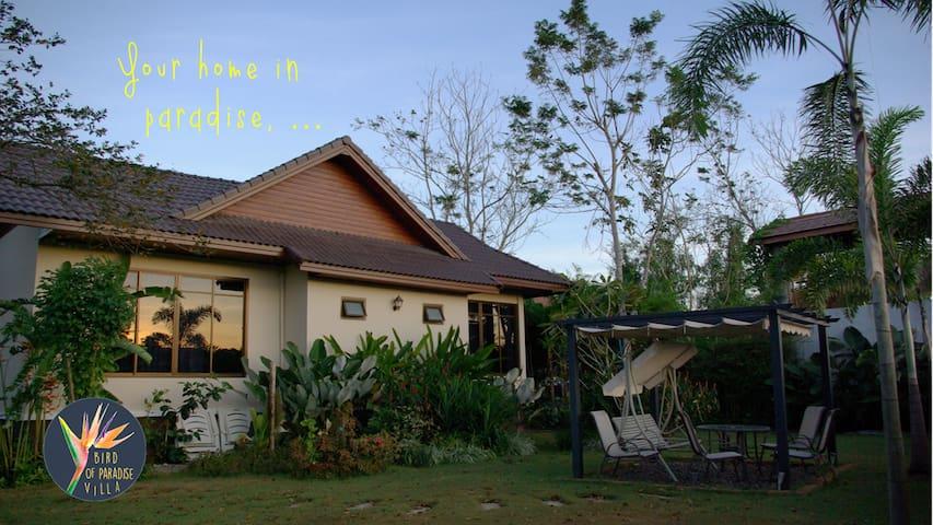 bird of paradise h user zur miete in krabi thailand krabi thailand. Black Bedroom Furniture Sets. Home Design Ideas