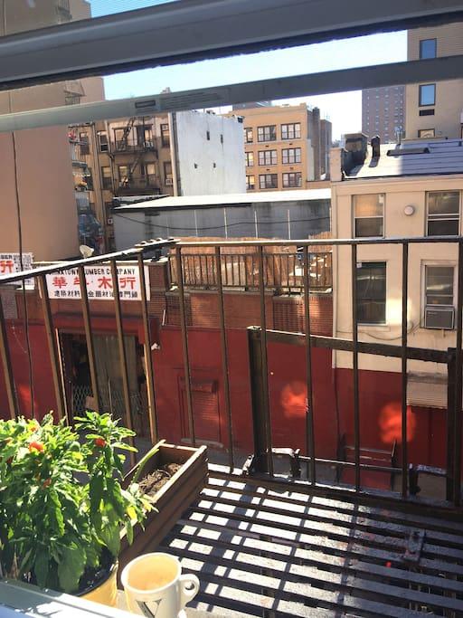 Spacious 1 bedroom sunny apt apartamentos en alquiler en nueva york nueva york estados unidos - Alquiler apartamentos nueva york ...