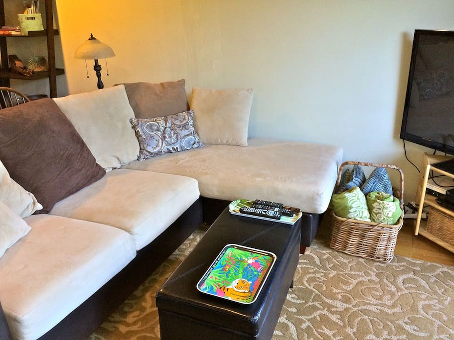 The parlor is a great spot for enjoying native species botanical garden view, reading from our collection of books, working from home with a view, or catching up on some Netflix on the smart TV.