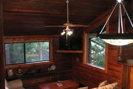 Crow's Nest Cabin on Piper Lane - College Station - Stuga