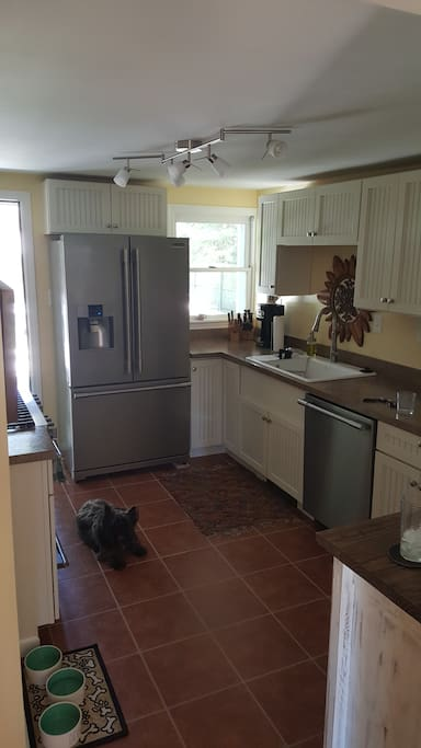 Kitchen with professional Suite.  Dog not included.