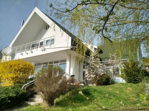 White Villa - Transylvanian lakeside holiday home