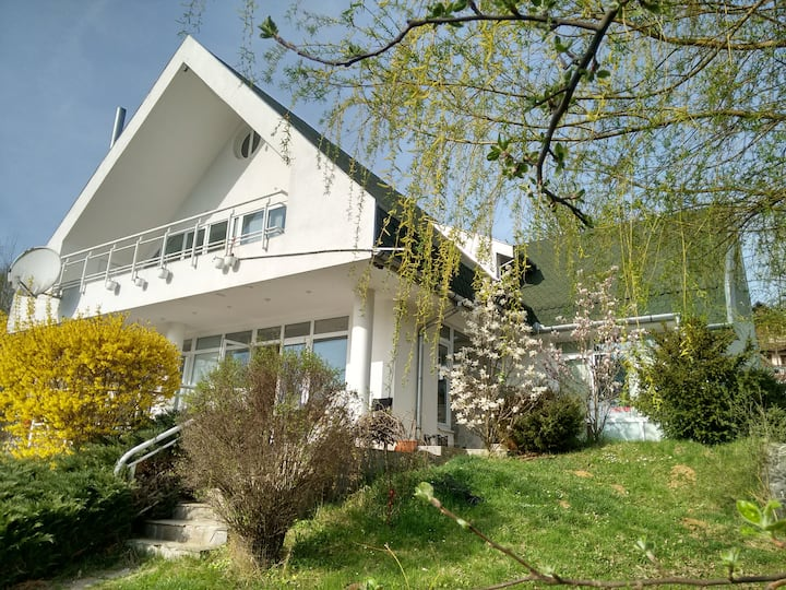 White Villa - Transylvanian lakeside holiday home