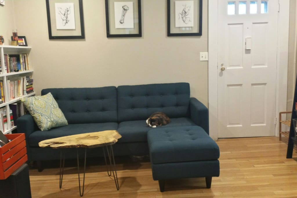 Bright 1 bedroom in the heart of somerville apartments One bedroom apartments somerville ma