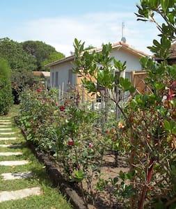 maisonnette dans un cadre verdoyant - Casa