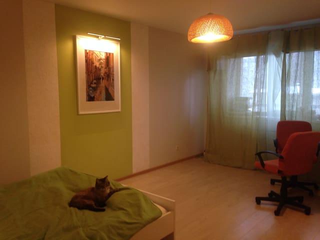 Access point for unusual travelers - Ekaterimburgo - Apartamento