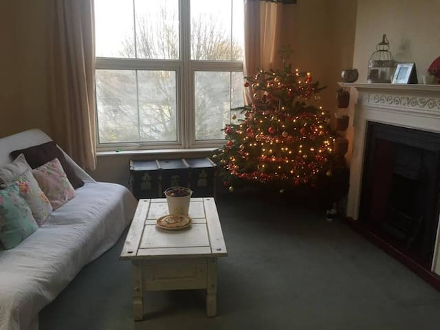 A cosy  one bedroom flat in north London