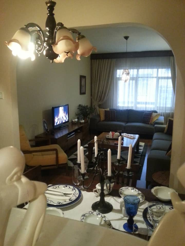 Cosy city apartment