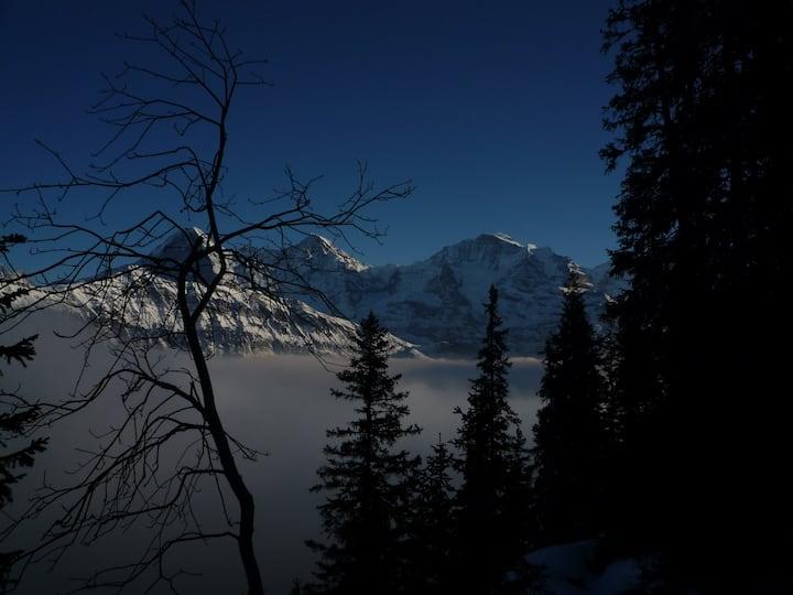 Peaceful Alpine village studio for2