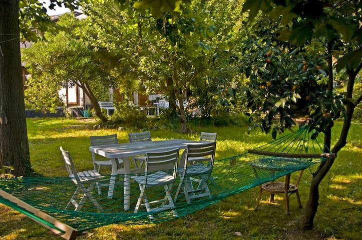 BB Verde sul mare a prezzo speciale - Arenzano - ที่พักพร้อมอาหารเช้า