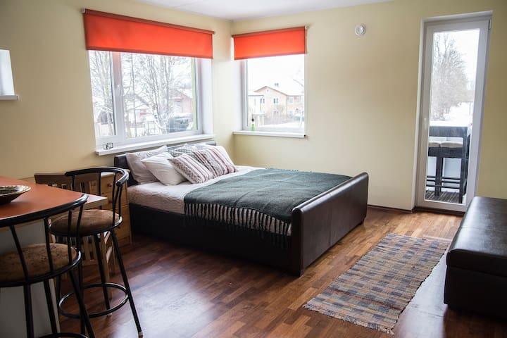 Modern apartment (Pet Friendly)