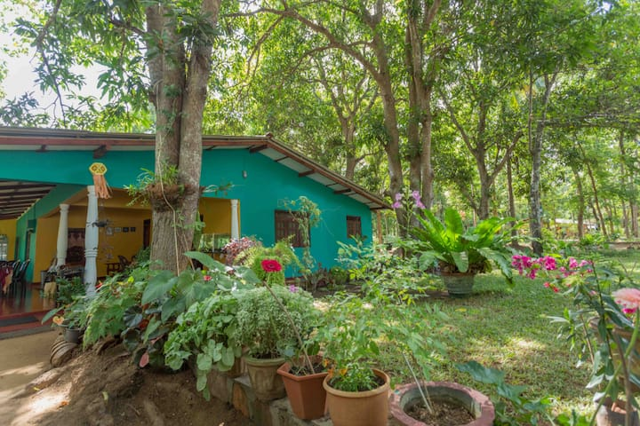 Neverbeen to Palitha Homestay | Family Room