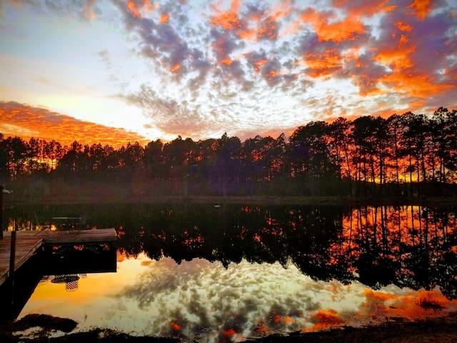 Pond-side Paradise
