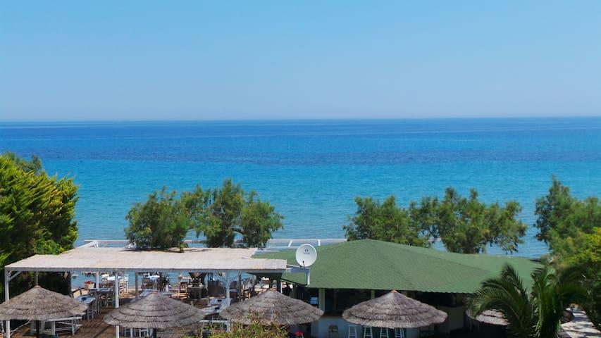 Beautiful sea view studios on the beach ! - Zakinthos - Apartamento
