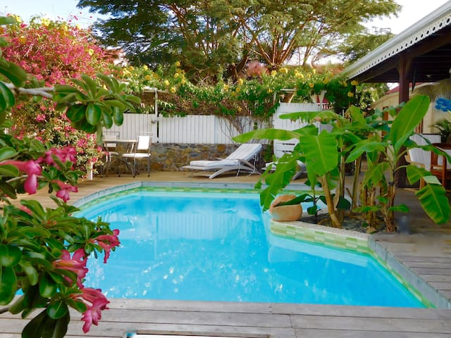 THE PARADISE IN THE CARIBBEAN - MF - Villa