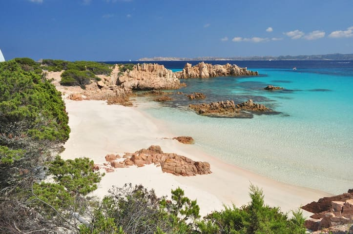 Beautiful Apt. seaview wifi parking - La Maddalena - Apartament