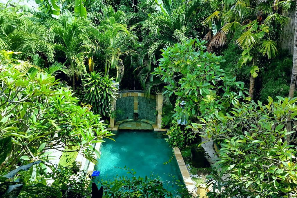 TROPICAL GARDEN AND NATURAL 5 X 15 M GREEN STONE SWIMMING POOL