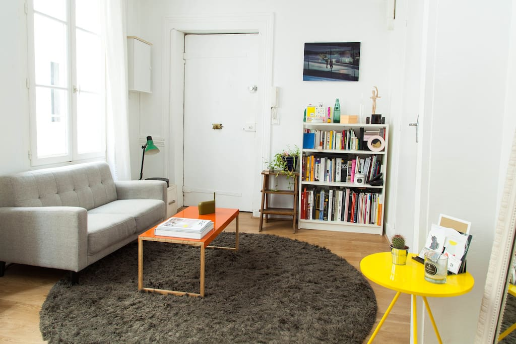 Living room / Focus on the library and the sofa