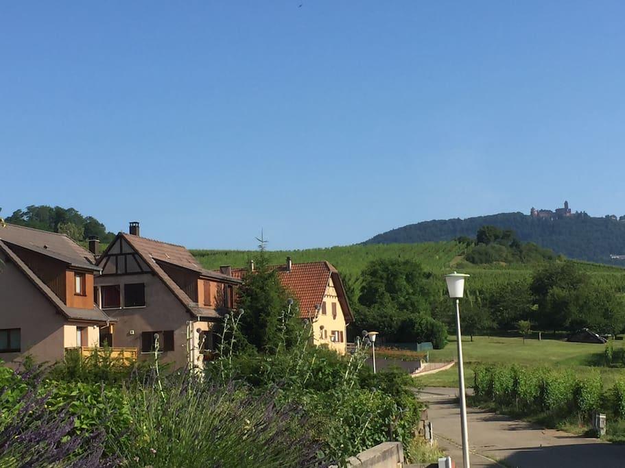 A 500 mètre de la route des vins, soyez la bienvenue au gite rouge au cœur du vignoble Alsacien