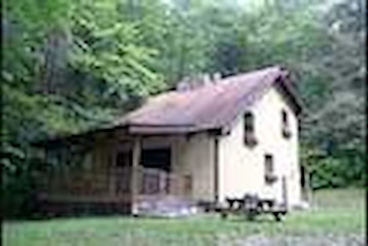 The Nantahala Mountain House Cabin  - Topton