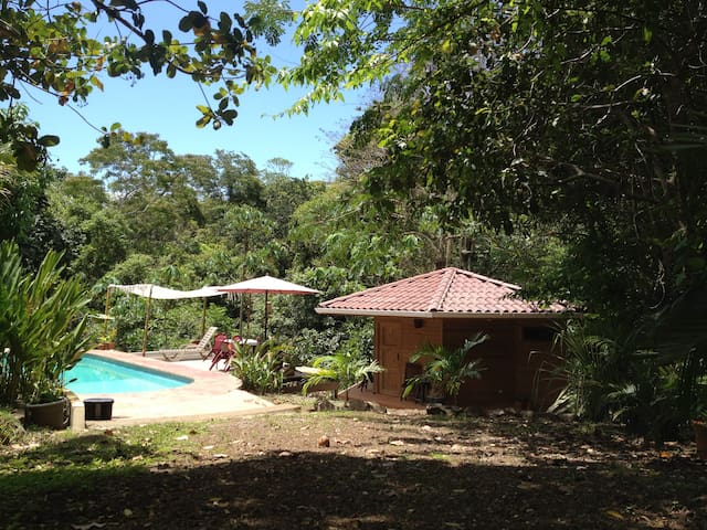 Private Paradise in Montezuma