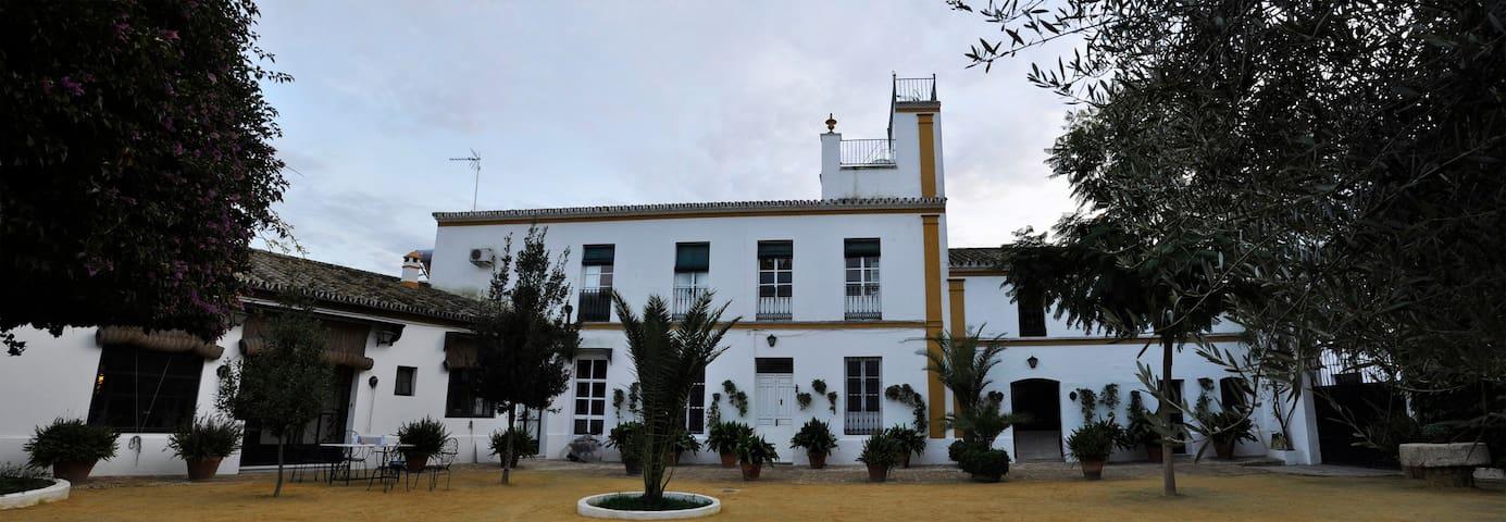 Hacienda San José, Hinojos, Huelva - Hinojos - Huis