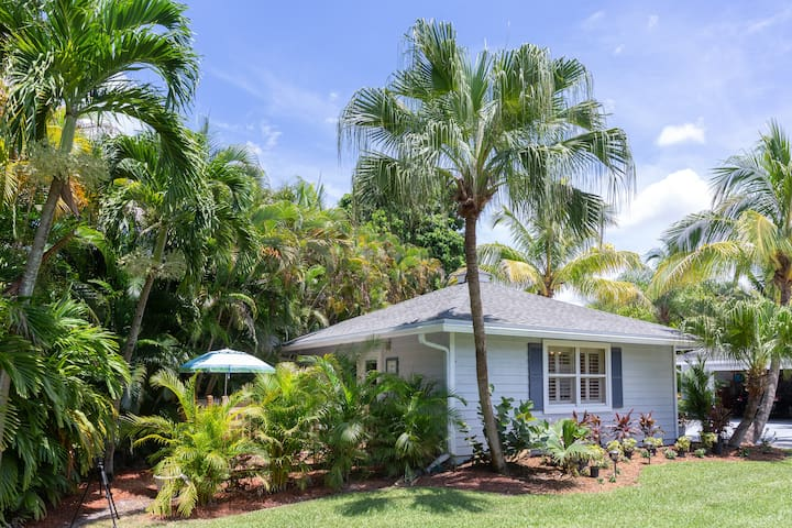 The House of Palms